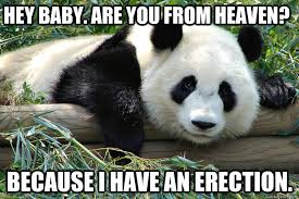 Pick Up Line Panda Meme - terrible pick up line panda memes quickmeme