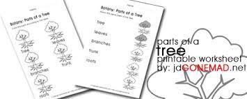 jdgonemad net blog archive parts of a tree printable worksheet