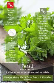 comment utiliser le romarin en cuisine food inspiration comment utiliser le persil en cuisine le persil