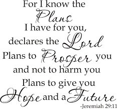 read the plan i have plans for you bible quotes backgrounds u003eread the bible