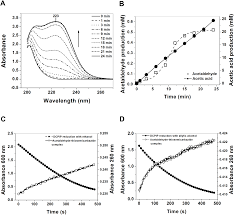 Ijms Free Full Text The Oxidative Fermentation Of Ethanol In