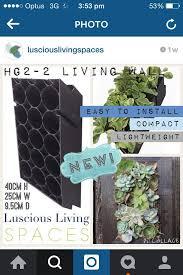 Vertical Gardens Miami - 54 best vertical gardening images on pinterest green walls