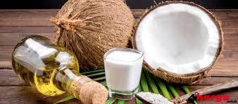 Minyak Zaitun Untuk Rambut Di Alfamart walaupun masih kontroversi minyak kelapa dijual di alfamart mulai