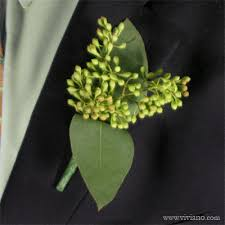 Boutonniere Flower Seeded Eucalyptus Boutonniere Flowers Plants Gift Baskets From