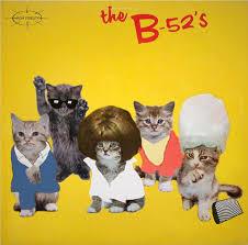 cat photo album top 10 album covers featuring cats petful