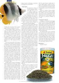 algae in ornamental fish feeding