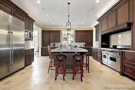 kitchen appealing dark walnut kitchen cabinets luxury style
