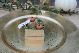 mini pumpkin patch place cards
