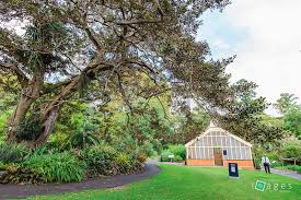 Botanical Garden Sydney by Images By Kevinroyal Botanic Gardens Sydney Wedding Ceremony Locations
