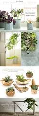 succulent planters for sale 93 best planters images on pinterest diy planters plants and pots