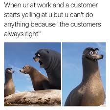 Bad Day At Work Meme - 60 animal memes that will cure your bad day cure memes and animal