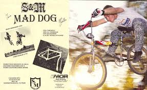 mad for motocross 2 s u0026m mad dog dirt bike the twenty most progressive signature