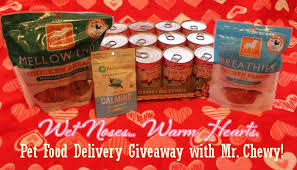 gourmet food delivery pet food delivery service review giveaway with mr chewy