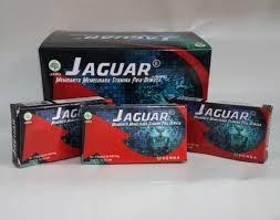 jual kapsul jaguar stamina pria obat kuat toko herbal online