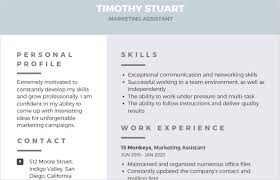 Networking Skills In Resume 12 Easy Attractive And Free Infographic Resume Templates