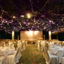 Decorative Indoor String Lights Decorative Indoor Twinkle Lights Wanker For