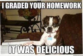 Meme Pictures With Captions - funny meme captions with dogs funny pics story