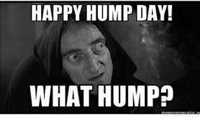 Meme Hump Day - happy hump day what hump memegeneratorne hump day meme on