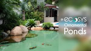 ecosys ornamental ponds