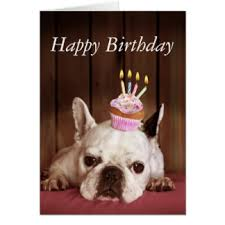 bulldog cards greeting photo cards zazzle