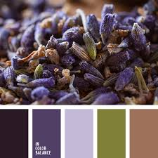 shades of dark purple цветовая палитра 2588 color balance color inspiration and color