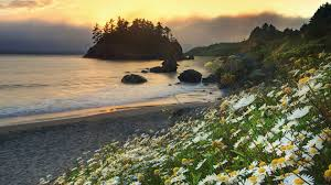 California landscapes images Beaches california beaches landscapes trinidad full hd nature jpg