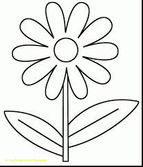 printable spring flowers spring flowers coloring pages with spring color pages google
