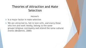 intimate relationships and marriage ppt video online download
