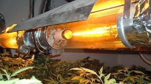 types of grow lights different types of grow lights their benefits ushio metal high