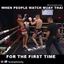 Muay Thai Memes - this would be funny if it were not for the that a lot of martial