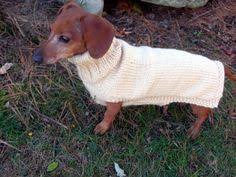 crochet pattern for a dachshund sweater free all things