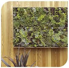 Ebay Vertical Garden - 97 best living walls images on pinterest landscaping vertical