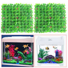 online get cheap green aquarium fish aliexpress com alibaba group