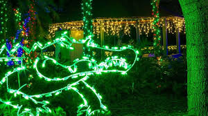phoenix zoo lights members only lights zoo miami miami from 1 to 30 december