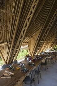 bambus design 261 besten bamboo bilder auf bambus design bambus und