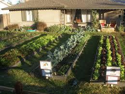 farmyard localharvest