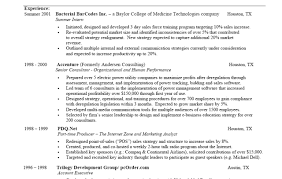 dreadful professional summary for resume tags professional