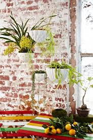 wall plant holders more gorgeous planters just loving this range from angus and