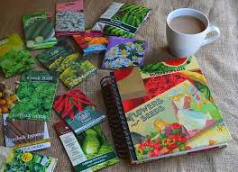 Plastic Photo Album Organize Seed Packets In A Photo Album Lovely Greens Garden
