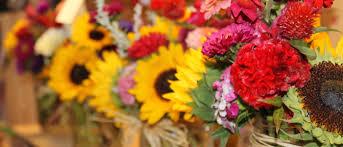 Fresh Cut Flowers Wilson Farm Fresh Cut Flowers