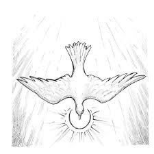 signs and symbols dove saint mary u0027s press