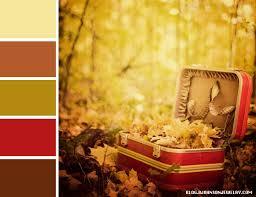 color palette doily pumpkin