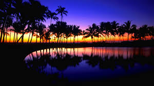 awesome amazing tropical hd wallpaper free download
