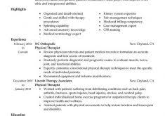 what to put in a resume resume example
