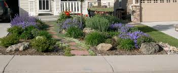 need a no low water front yard solution yard landscaping front