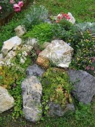 how to build great rock gardens for small spaces rock gardens