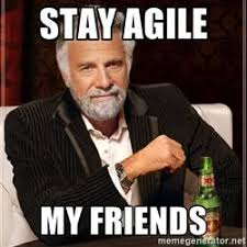 Agile Meme - 8 best agile images on pinterest memes humor funny memes and ha ha