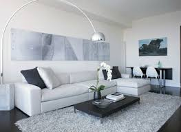 fluffy rugs for living room home design