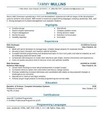 Php Programmer Resume Sample by Exclusive Idea Web Developer Resume Examples 2 Unforgettable Web