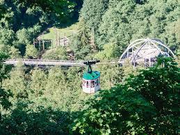 Luchsgehege Bad Harzburg Sehenswürdigkeiten In Bad Harzburg Harzer Tourismusverband E V